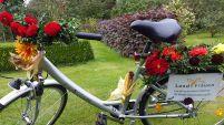 Fahrrad dekoriert